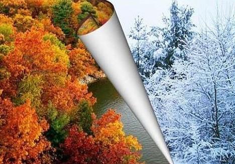 Модные тенденции на осень и зиму 2013 - 2014 года.